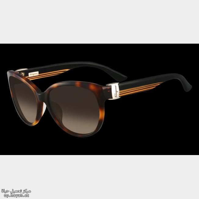 صور نظارات شمسيه  بالماركات العالميه 3IFrHE.png