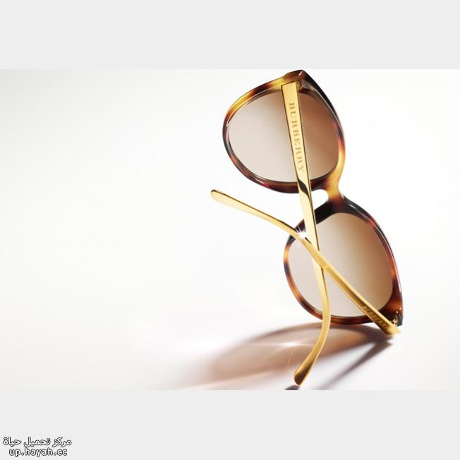 صور نظارات شمسيه  بالماركات العالميه bd2q3r.png